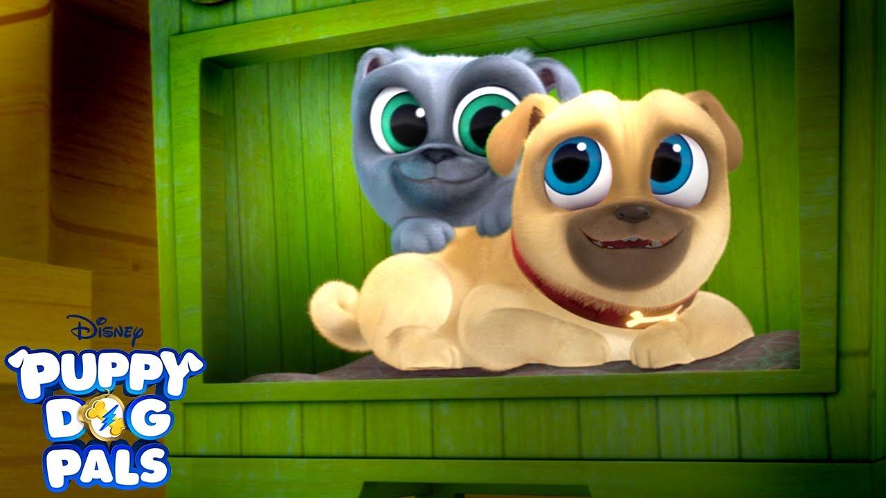 You Re My Best Friend Music Video Puppy Dog Pals Disney Junior Youtube