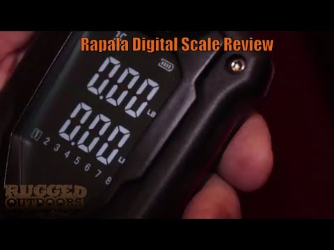 Best Bass Fishing Scale - Rapala Digital Scale Review