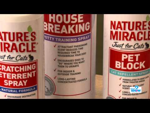 Stop Unwanted Dog Behavior With Scent Repellants & Attractants - PetSmart
