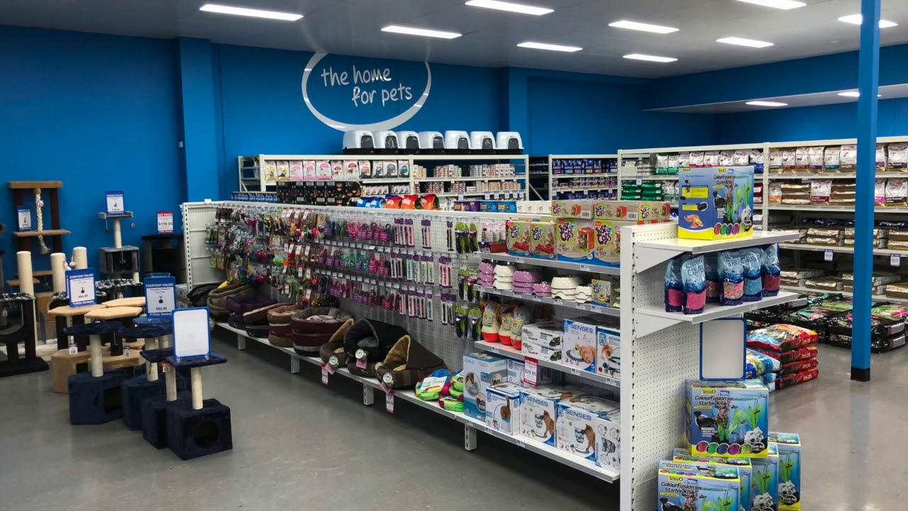 gondola shelving and retail displays for pet stores shelves for rh youtube com cigarette shelves for stores wooden shelves for stores