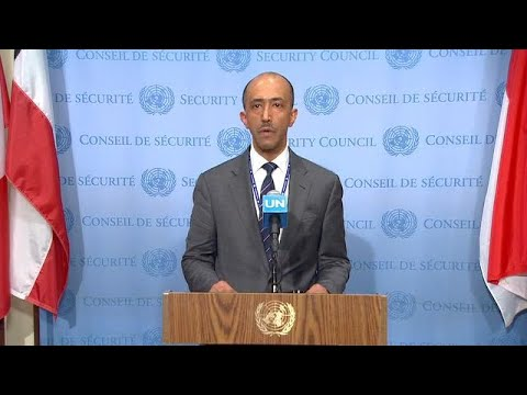 Central African Republic - Security Council President Briefs the Press on the Situation