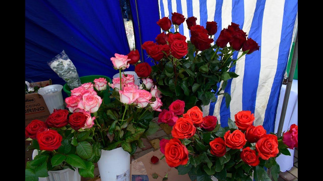 Купить цветы в городе гулькевичи, оптом воронеж