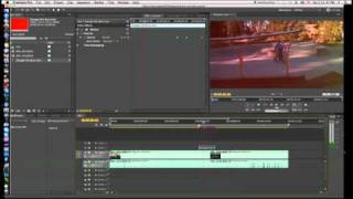 adobe premiere pro cs5 editing basics
