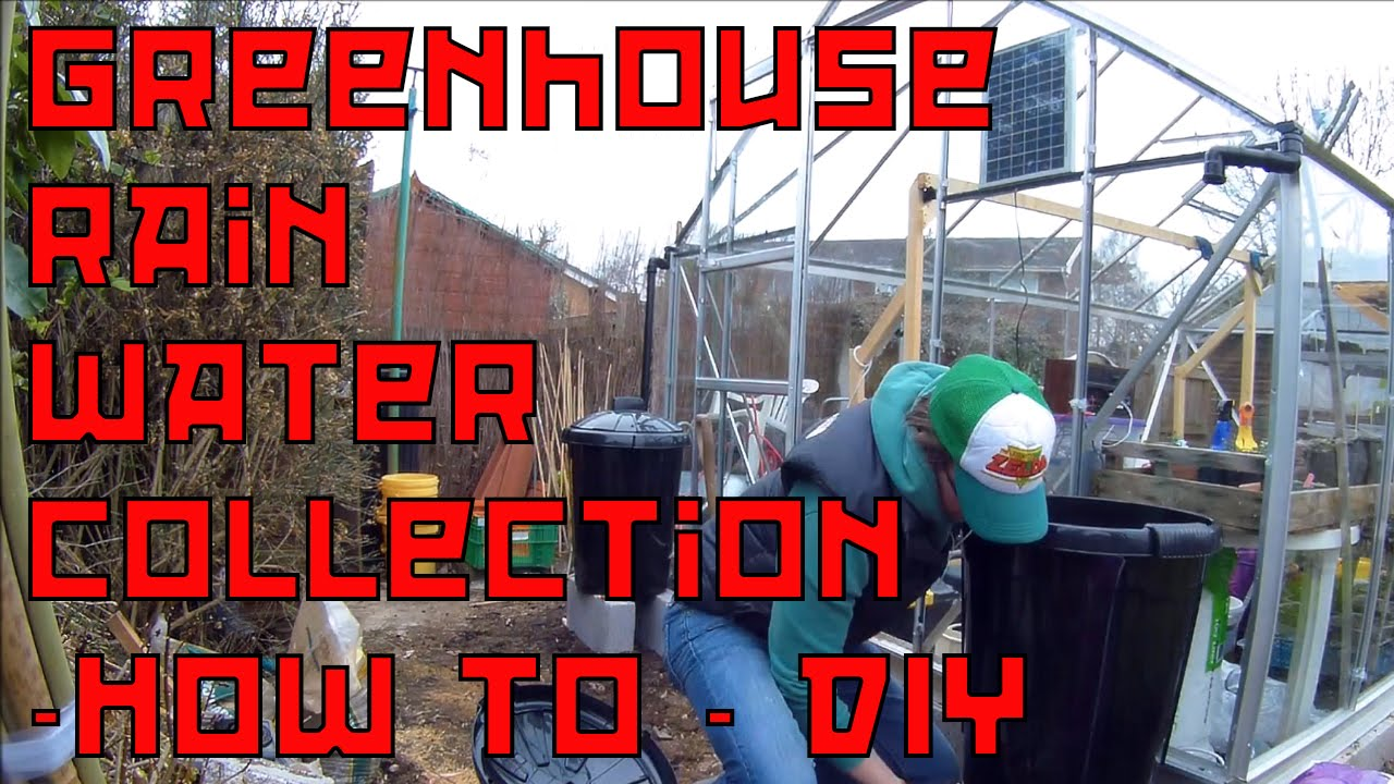 DIY cheap Rain Water collecttion from Greenhouse