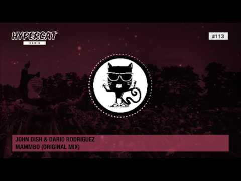 Hypercat Radio #113 Mixed by Dario Rodriguez