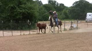 Roping Horse Training - Circle D Ranch LLC - Dallas DFW Texas