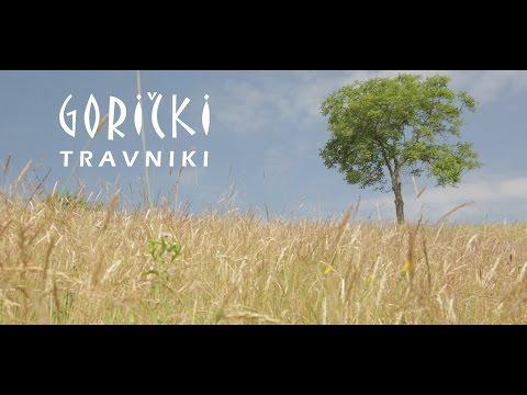 Gorički travniki