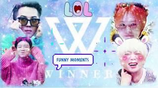 Winner  위너  - Funny/cute Moments 2018 | Part 1