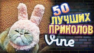 Самые Лучшие Приколы Vine! (ВЫПУСК 157) Лучшие Вайны