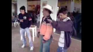 dança de bebado de guaraciama