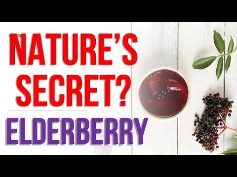 elderberry-&-elderberry-benefits-for-you!