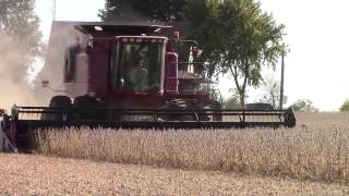 case ih 2588 axial flow combine harvesting soybeans