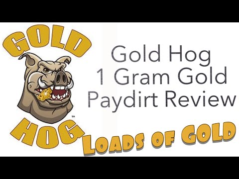 GOLD HOG PAYDIRT 1 POUND CONCENTRATES REVIEW