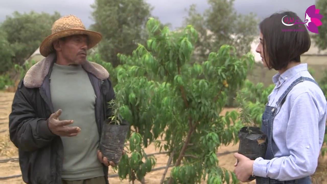 برنامج روان بمهنة الرجال الحلقة الثالثة مهنة الزراعة