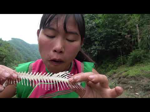 Primitive Life: Smart Girl's Unique Fishing Catch Fish For Cooking - Daily Life Eating Fish