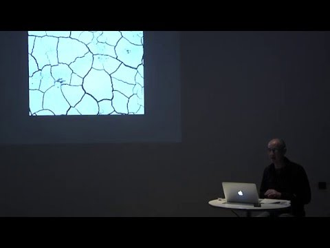 Camden Arts Centre | Talk: Gibellina: Art, Memory and the Unfinished