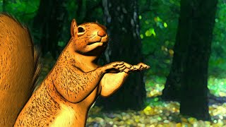 funny dancing squirrel animation made with daz 3d studio