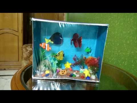 Aquarium Using A Shoebox Youtube