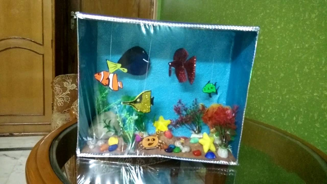 Aquarium using a shoebox youtube sciox Image collections