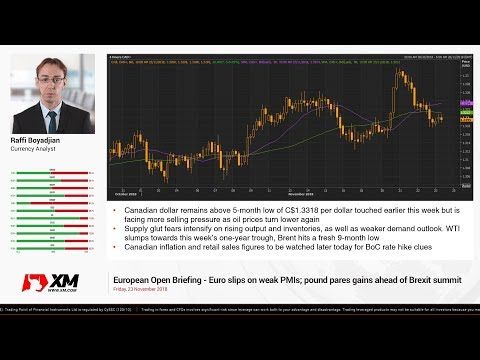 Forex News: 23/11/2018 - Euro slips on weak PMIs; pound pares gains ahead of Brexit summit
