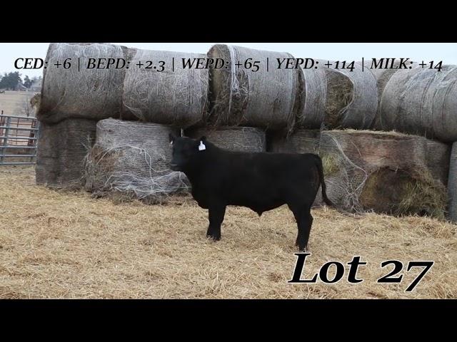 Sweiger Farms Lot 27