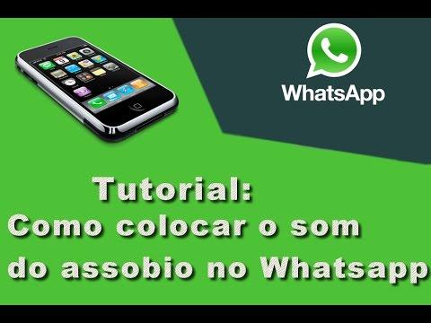 Tutorial - Como colocar o assobio no whatsapp em qualquer celular.