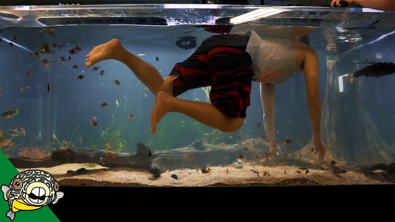 monster-aquarium-800g