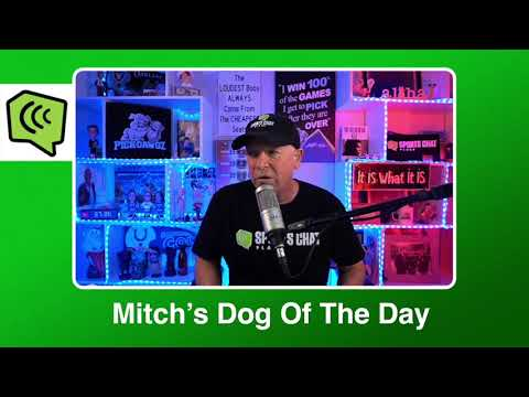 Mitch's Dog of the Day 2:28:21: Free NBA Basketball Pick NBA Picks, Predictions and Betting Tip