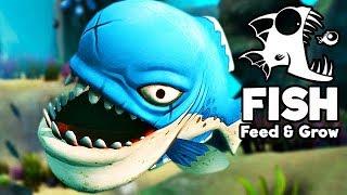 Feed and Grow Fish Gameplay German - Größter Piranha Der Welt