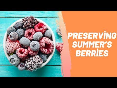Amazing Ways to Preserving Summer's Berries