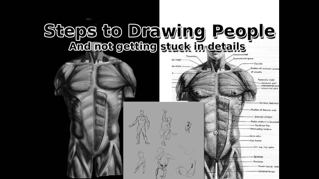 Learning How To Draw People - Gesture, Figure and Anatomy - YouTube