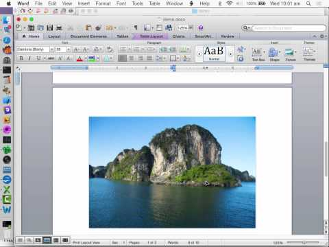 Addressing File Format Compatibility in Word Processors