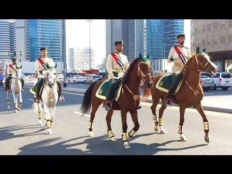 Dubai Police Special Horse Parade