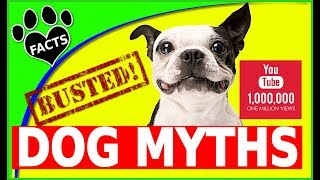 Mythbusters Dog Myths Busted