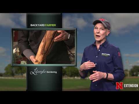 Backyard Farmer Presents Lifestyle Gardening 505
