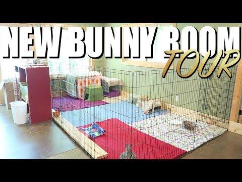 New Bunny Room Tour! 🐰