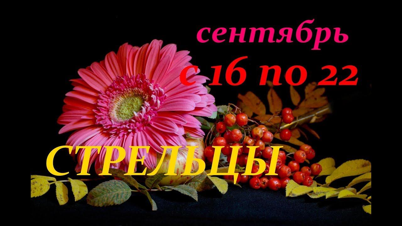 СТРЕЛЬЦЫ. С 16 по 22 СЕНТЯБРЯ 2019 г. ПРОГНОЗ на НЕДЕЛЮ.