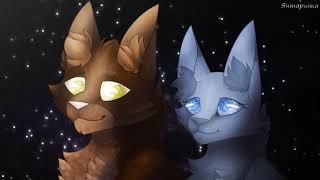 [Коты воители]♡Дай мне знак~Синяя Звезда и Жёлудь~ЗакаЗ~