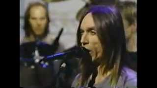 3 Late Show with David Letterman Iggy Pop - American Caesar.mp4