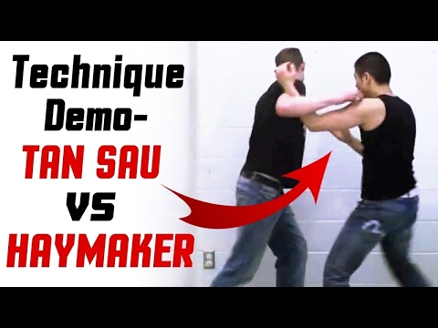 How to Counter a Haymaker? Wing Chun vs Boxing - Siu Lim Tao Technique Demo