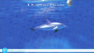 Dolphin Song - Relax Music and Nature Sound
