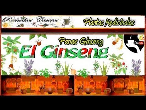 ginseng | Doovi