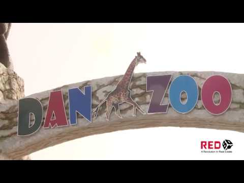 Danzoo Pakistan's 1st International Standard Day & Night Zoo in Bahria Town Karachi
