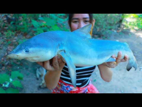 Yummy Shark Soup Cooking - Shark Recipe - Cooking With Sros