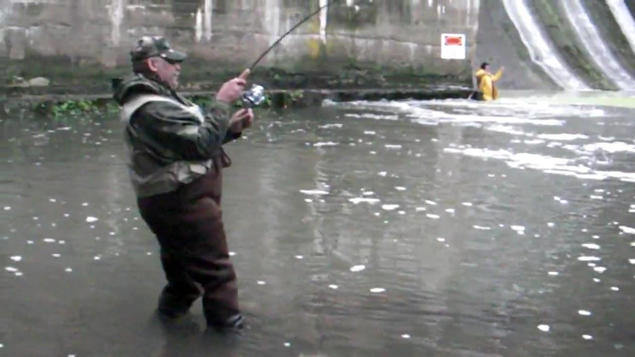 Salmon fishing burts dam 18 mile creek new york youtube for Salmon fishing new york