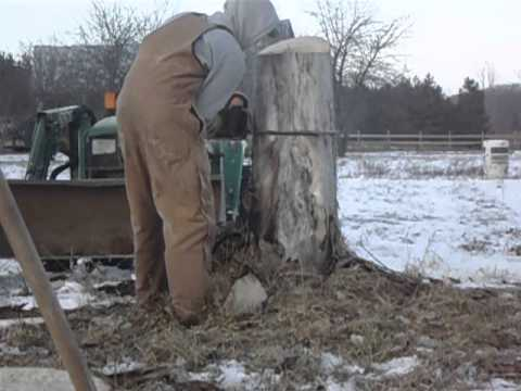 how to cut stumps with chainsaw
