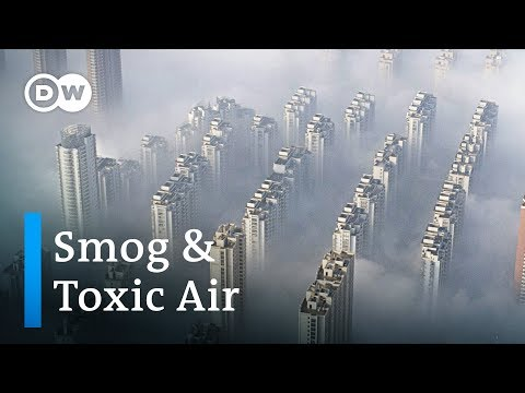 How much does smog and air pollution shorten our lives? | DW News