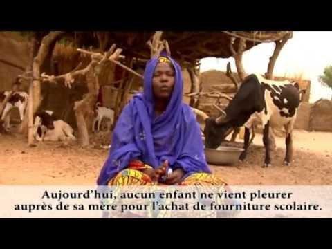 Programme Education Niger