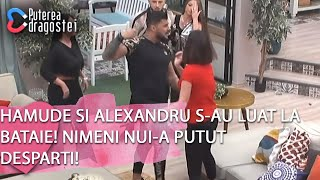 Puterea dragostei (01.04.)-Hamude si Alexandru s-au luat la bataie! Nimeni nu i-a putut de ...