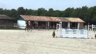 Océanie de Morcé Z en 5 ans qualificatifs à Brie le 12/05/2015 A VENDRE